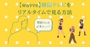 wavve(韓国テレビ)の視聴方法(日本から)